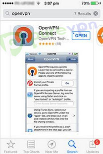 """Search for """"OpenVPN Connect"""" on App store and download the application."""
