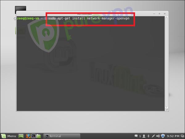 Linux mint openvpn